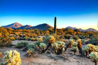 pinnacle_peak_park_scottsdale-345x230 - scottsdale